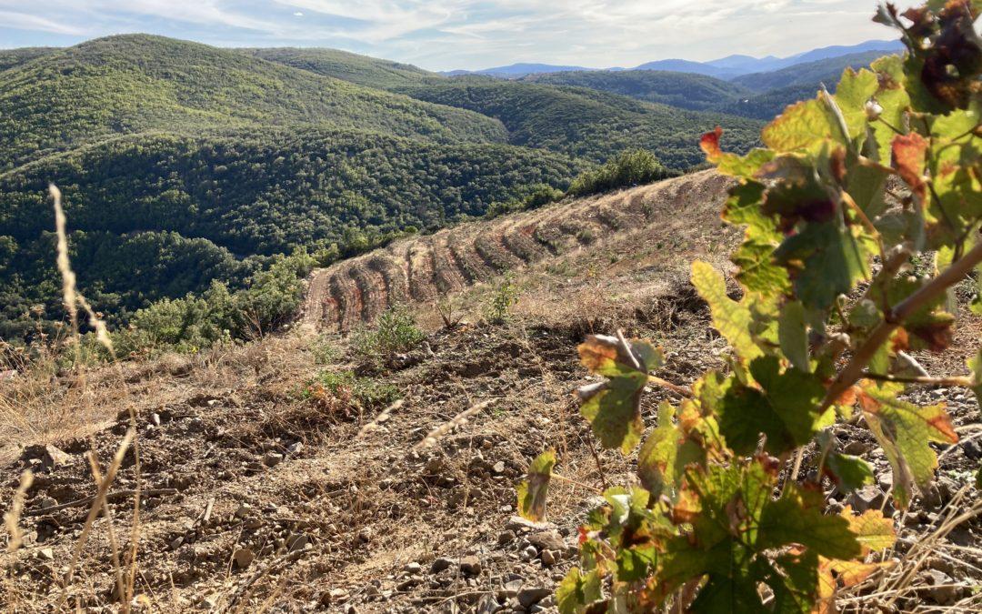 Escapada a la Sierra de Francia