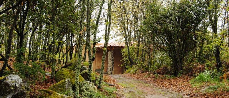 Vinos Sierra de Francia: bodega Cambrico
