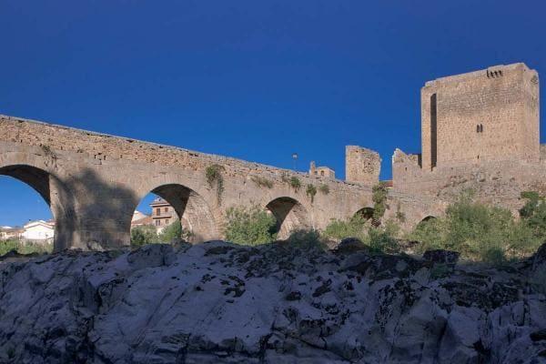 Puente y Castillo en El Puente Congosto