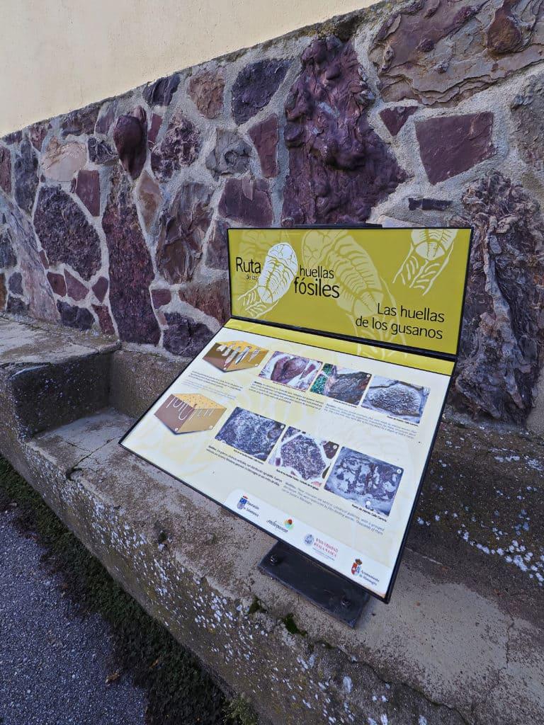 Experiencia en Ciudad Rodrigo - Monsagro